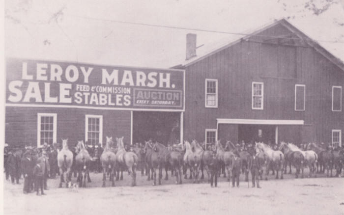 Leroy Marsh Horse and Mule Company, ca.1877?