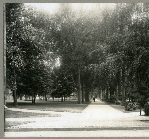 Standish Park, ca. 1903.  Harold Way Photograph Collection, Knox College Special Collections